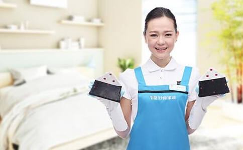 广州市朗逸清洁服务有限公司