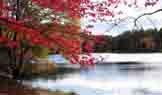 纽约,上州风景,唐诗花园,纽约旅游,游记